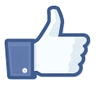 "Facebook allowed companies to place the ""like"" button on any page on their website."